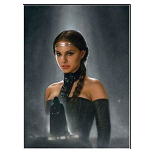 Star Wars Amidala Knight Has Fallen Canvas Giclee Print