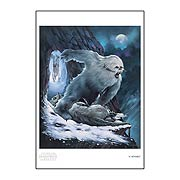 Star Wars Capture Paper Giclee Print