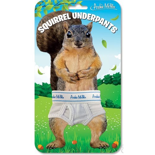 Squirrel Mini Underpants