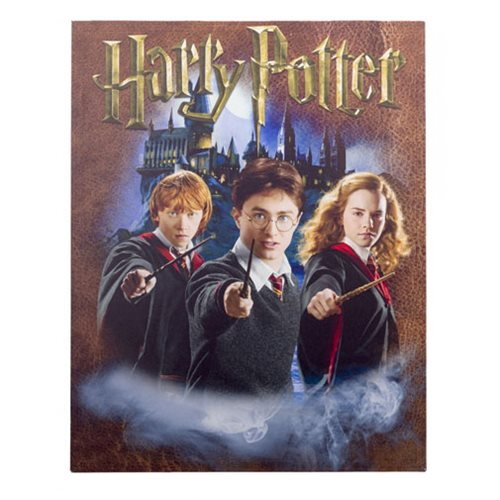 Harry Potter Character Wall Canvas Art