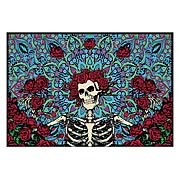Grateful Dead Bertha Blue/Red Micro Raschel Fleece Blanket