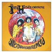 Jimi Hendrix Are You Experienced Canvas Print