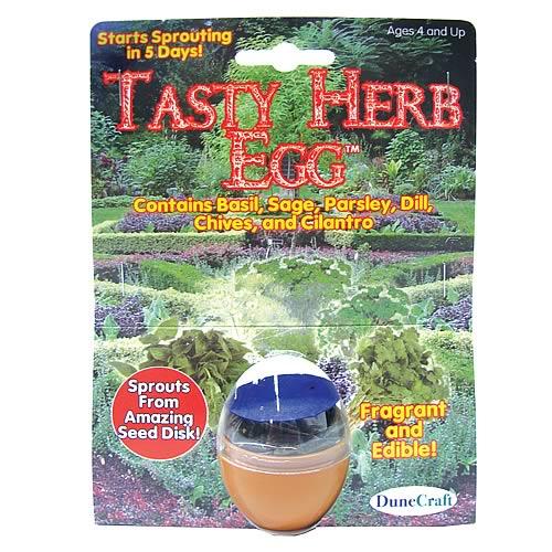 Tasty Herb Egg Terrarium Kit