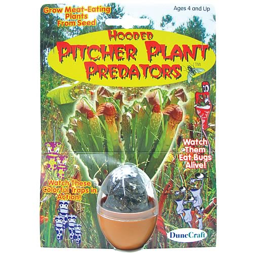 Pitcher Plant Predators Terrarium Kit