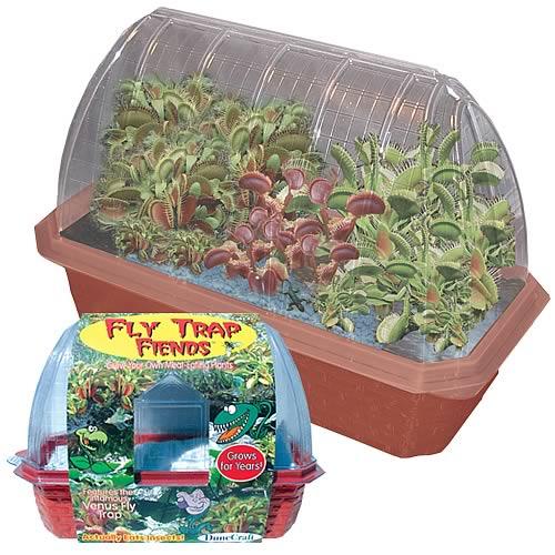 Fly Trap Fiends Windowsill Garden