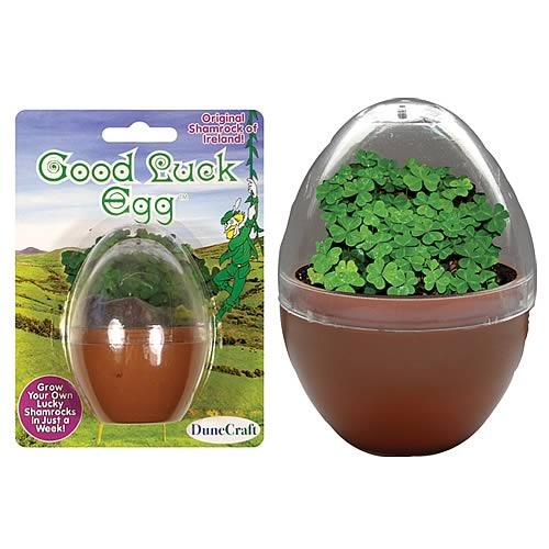 Good Luck Egg Micro Terrarium