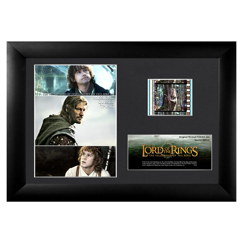 Lord of the Rings: Fellowship of the Ring Series 6 Mini Cell