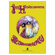 Jimi Hendrix Are You Experienced Fabric Poster Wall Hanging