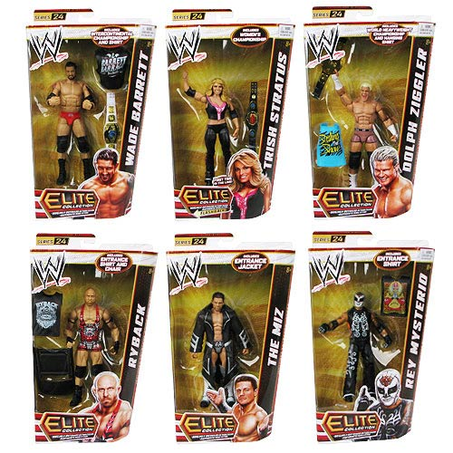 WWE Elite Collection Series 24 Action Figure Case