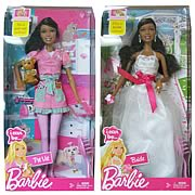 Barbie I Can Be Dolls African American Wave 2 Case