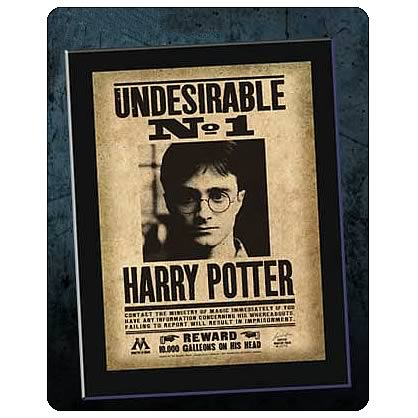Harry Potter Undesirable No. 1 Mounted Sign