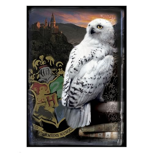 Harry Potter Hogwarts Castle and Hedwig Puzzle