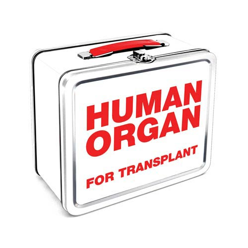 Zombie Human Organ Lunch Box