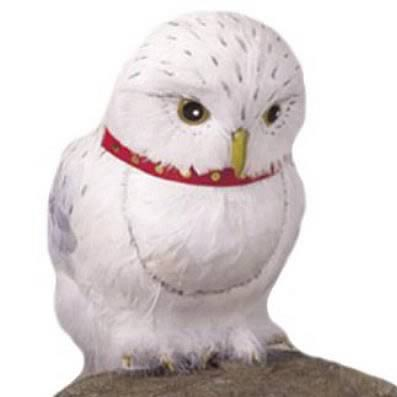 Harry Potter Movie Hedwig The Owl