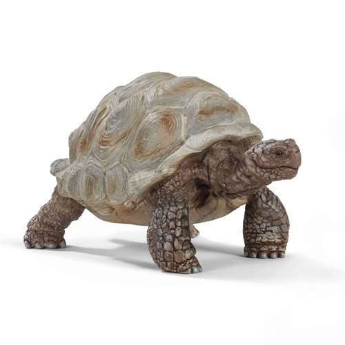 Giant Tortoise Collectible Figure