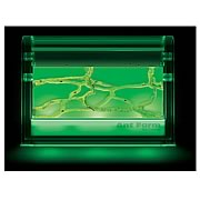 Ant Farm Gel Colony with LED Light Module