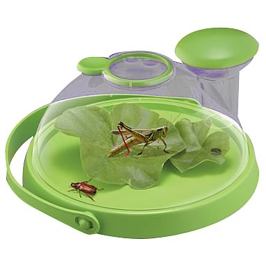 Bug Jug  Live Insect Viewer