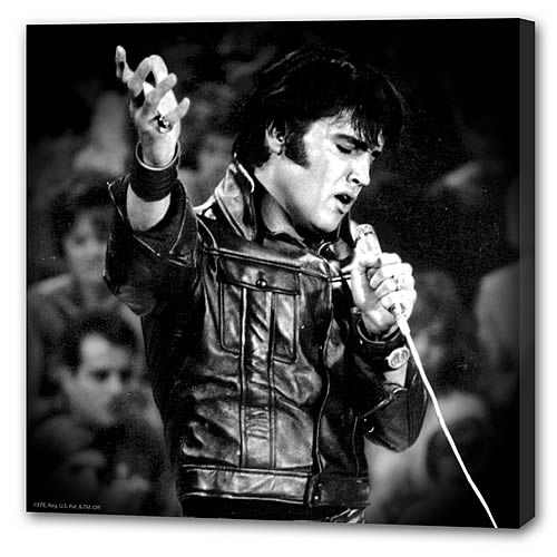 Elvis Presley Singing Small Stretched Canvas Print