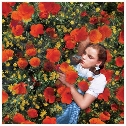 Wizard of Oz Dorothy Poppies Canvas Art