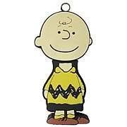Peanuts Charlie Brown 2GB USB Flash Drive