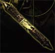 Predator: Combi/Bone Spear