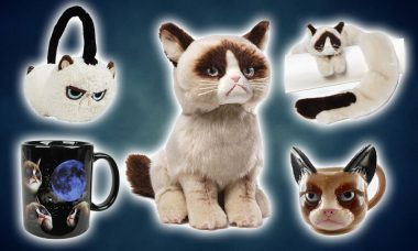Top 8 Best Grumpy Cat Collectibles