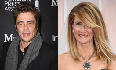 Benicio del Toro and Laura Dern Cast in Star Wars: Episode VIII, Which Has Begun Production
