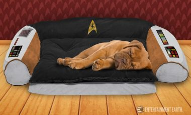 Give Fido a Taste of the Captain's Seat with This Trekkie Dog Bed