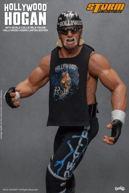 Hollywood Hogan 71